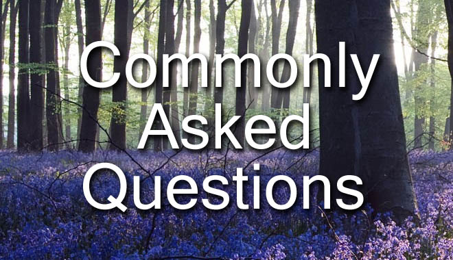 Sex Therapy Commonly Asked Questions